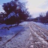 下雪的街道 免版税库存图片