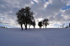 下雪的风景 免版税库存图片
