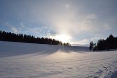 下雪的风景 免版税库存照片