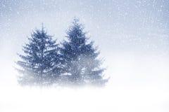 下雪 免版税库存照片