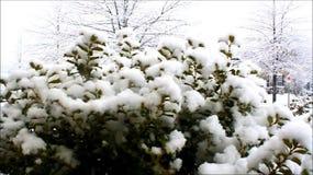 下雪 影视素材