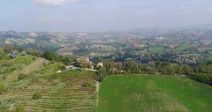 下面葡萄园行、绿草和金黄叶子,上面小山,秋天的,顶视图,特写镜头葡萄园线,离开 影视素材