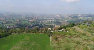 下面葡萄园行、绿草和金黄叶子,上面小山,秋天的,顶视图,特写镜头葡萄园线,离开 股票视频