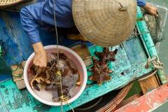 下龙市海湾,越南2012年8月10日-小船的食物卖主。许多vi 图库摄影