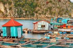 下龙湾的亚洲浮动村庄 免版税库存图片