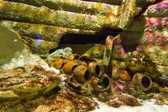 水下,废墟花瓶,水槽小船,水族馆 库存照片