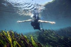 水下滑动- Merritts磨房池塘 免版税库存照片