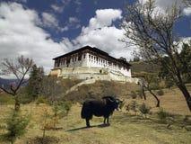 不丹dzong王国paro 库存照片