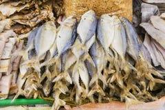 不健康的盐烘干了被保存的咸鱼海鲜在市场摊位 免版税库存图片