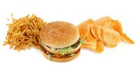 不健康2构成的食物 图库摄影