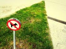 不允许的狗 免版税库存图片