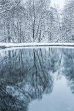 不冻结池塘在冬天 图库摄影