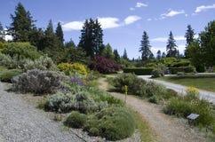 不列颠哥伦比亚大学的温哥华植物园 免版税库存图片