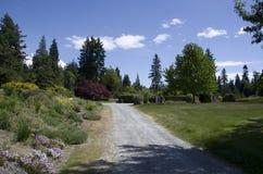 不列颠哥伦比亚大学的温哥华植物园 图库摄影