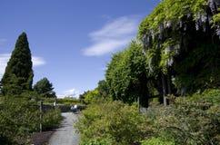 不列颠哥伦比亚大学的温哥华植物园 库存照片