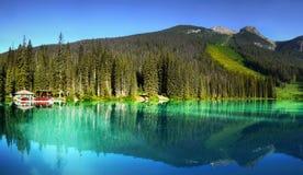 不列颠哥伦比亚省,温哥华,鲜绿色湖 库存照片