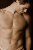 不剃须男性的躯干 库存图片