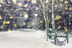 不可思议的不可思议的圣诞节降雪在冬天夜停放 在雪的光亮的雪花秋天 圣诞节和新年背景  免版税图库摄影