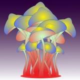 不可思议的五颜六色的蘑菇 免版税图库摄影