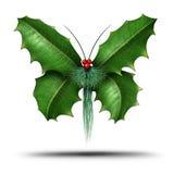不可思议的假日霍莉蝴蝶 免版税图库摄影