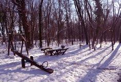 不可思议的冬天桃红色 免版税库存照片