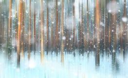 不可思议的冬天森林,一个童话, 免版税库存图片