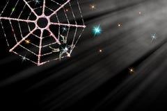不可思议的圣诞节蜘蛛装饰 在闪耀的moonli的冰冷的网 免版税库存照片
