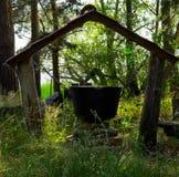 不可思议的大锅在森林 免版税库存图片