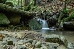 不可思议的山小河在喀尔巴阡山脉的森林里 免版税库存图片
