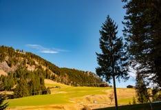 不可思议的山ladscape在巴伐利亚 免版税图库摄影