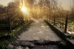 不可思议的桥梁 免版税库存照片