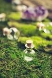 不可思议的烧瓶和紫色的石头在鲜绿色青苔在森林万圣夜题材 巫术和草药医术学 免版税库存照片