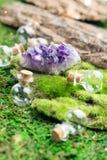 不可思议的烧瓶和紫色的石头在鲜绿色青苔在森林万圣夜题材 巫术和草药医术学 库存图片