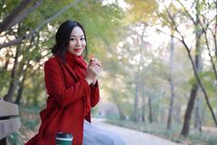 不可思议的秋天、愉快秋天的妇女和极乐,美丽的妇女坐一条长凳在秋天公园 图库摄影