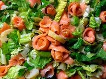 不可抗拒的三文鱼沙拉是更加美好的颜色 库存照片