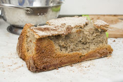 不合格的烘烤家做了面包 免版税图库摄影