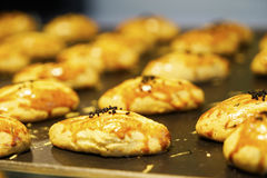 不同的东方阿拉伯土耳其甜点 免版税库存图片