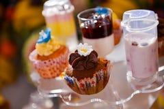 不同的五颜六色的杯形蛋糕 库存照片