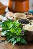 不同的亚洲人和中东香料,五颜六色的asso品种  图库摄影