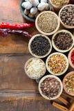 不同的亚洲人和中东香料,五颜六色的asso品种  免版税库存照片