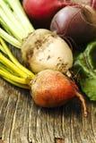 不同的品种新鲜的有机甜菜根  免版税库存照片