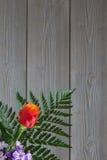 不同的品种花花束  库存照片