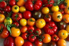 不同的品种蕃茄在木背景的 免版税库存图片