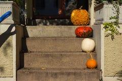 不同的大小万圣夜秋天南瓜装饰门廊步 库存照片