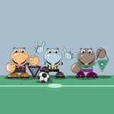 不同的大陆的足球运动员 库存图片
