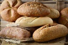 不同的小圆面包的分类 库存图片