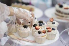 不同的开胃果子馅饼、蛋糕篮子与白色奶油和新鲜的多彩多姿的莓果,夏天点心,手  免版税库存图片