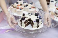 不同的开胃果子馅饼,蛋糕篮子与奶油色和可口巧克力蛋糕与奶油和黑莓,新鲜 库存照片