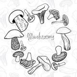 不同的手拉的蘑菇圆框架  图库摄影