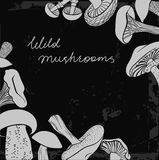 不同的手拉的蘑菇框架  免版税库存照片